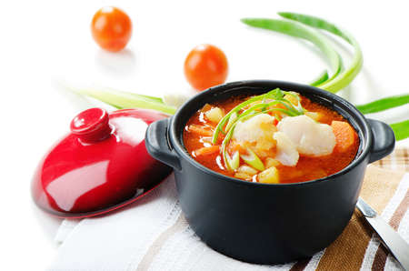 Fish Soup with vegetables  isolated on white background photo