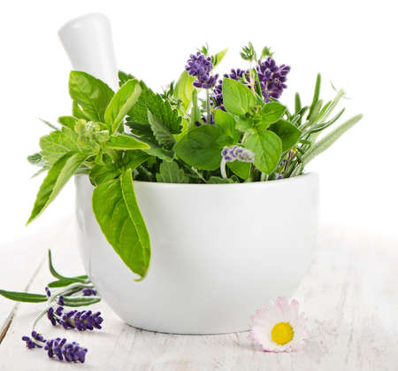 Les herbes fraîches sur une table en bois isolé sur fond blanc Banque d'images - 21608225
