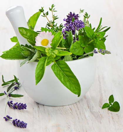 Herbs on wooden table  Selective focus Stock Photo