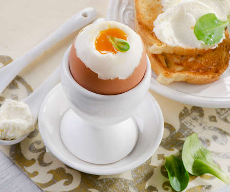 eggcup: Soft boiled egg with toast and herb. Selective focus