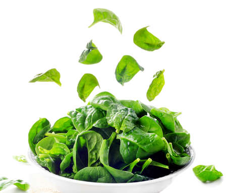 Fresh green spinach leaves isolated on white. Selective focus 版權商用圖片