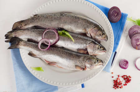 salmon fishery: Fresh Rainbow trouts on white plate with herbs