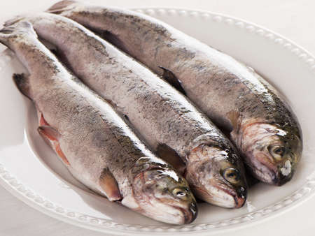 salmon fishery: Rainbow trouts on a white plate. Selective focus