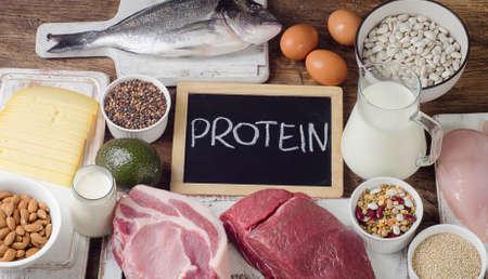 단백질 최고 함유 식품. 균형 잡힌 식단 섭취. 평면도 스톡 콘텐츠
