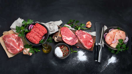 Variety of raw meat with seasoning on dark background. Top view with copy space Archivio Fotografico