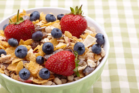 Bowl of healthy muesli and fresh berries Stock Photo - 15826344