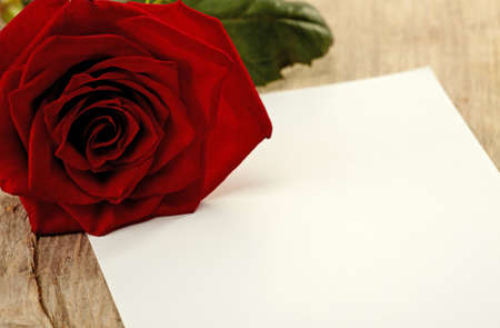 recipient: Paper note and red rose Stock Photo