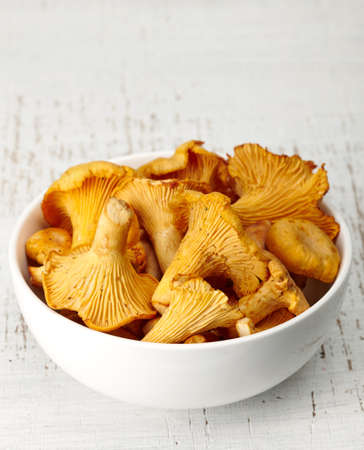 chanterelle: Bowl of chanterelle mushrooms Stock Photo