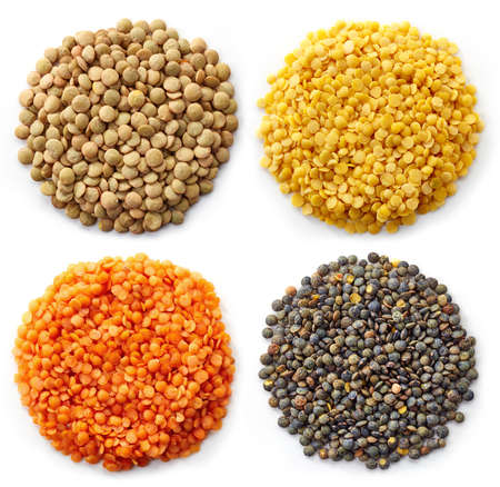 lentils: Various types of lentils (turkish lentils, green lentils, canadian lentils, indian lentils) isolated on white background