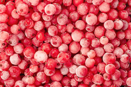 currant: Frozen currant background Stock Photo