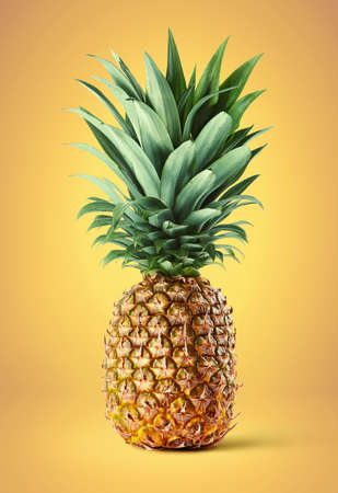 Fresh whole pineapple on bright yellow background