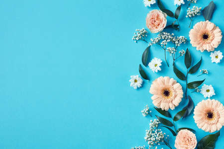 Beautiful pink and white flowers composition on blue