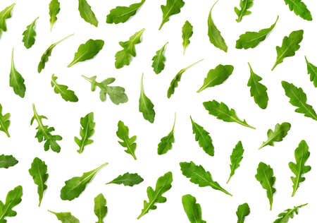 Pattern of fresh arugula or rucola salad leaves isolated on white background. Top view