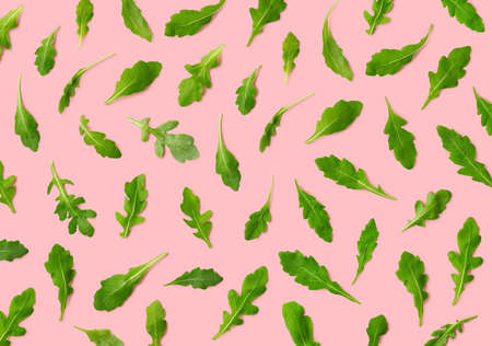 Colorful pattern of fresh rucola or arugula leaves on pink background. Top view Banco de Imagens