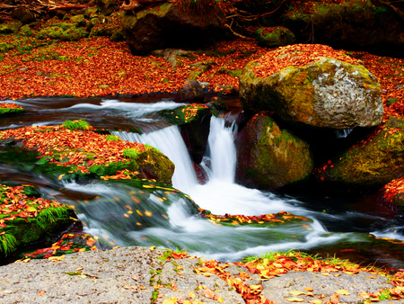 kikuchi 협곡, 구마모토, 일본에서 가을 스톡 콘텐츠