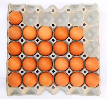 rows of eggs in a protective container photo