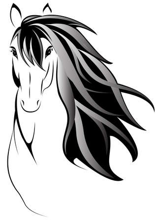 the mane: Draw a picture of black and white style horse head