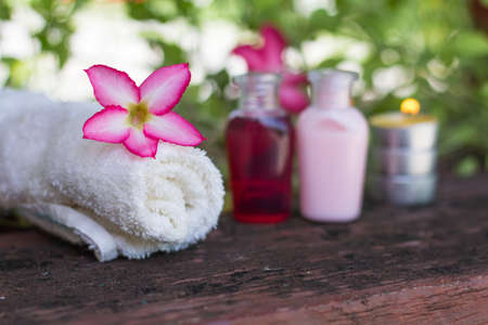 pink flower on blur soap background,