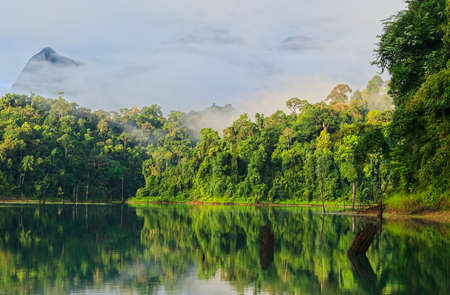 The lake and jungle in the fog on the background of the mountains in the morning