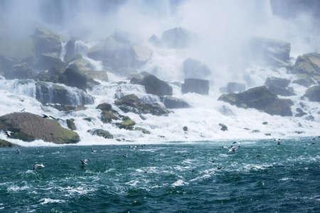 the seagulls: Beautiful Niagara Falls Mist and Seagulls in New York USA