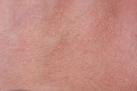 skin texture: Close Up Top of Hand Skin Texture with some Hairs Stock Photo