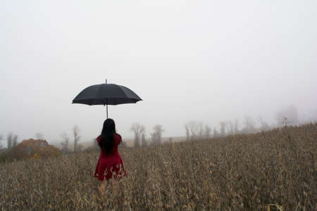 girl in rain: Woman in red dress on the back with black umbrella against a morning foggy watching soybean field