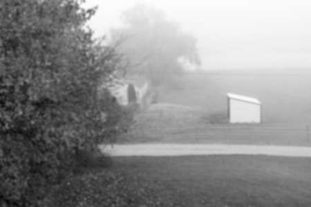 horse stable: Blur black and white photo of mini horse stable in a foggy morning mist