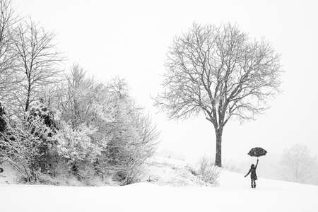 winter woman: A woman walking alone in snow storm watching falling snow, Woman holding an umbrella up walking in snow storm, Lonely woman in the winter wonderland