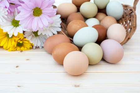 Chrysanthemum flower and colorful fresh organic chicken eggs in basket on wooden background, Colorful natural chicken eggs, Selected focus organic chicken eggs overflow out of the basket, Easter eggs,