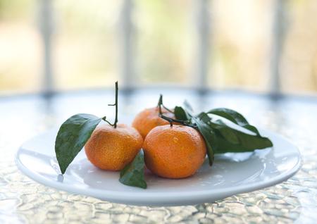 mandarine: Fresh orange tropical fruit mandarine at white plate