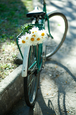 curb: Green old bike with a bouquet of chamomiles on the trunk parking near the curb