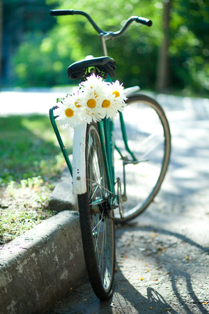 curb: Old bicycle with a bouquet of chamomiles on the trunk parking near the curb
