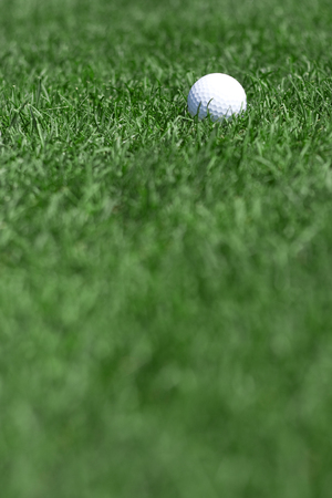 golfball: pictire of green grass and white golfball Stock Photo