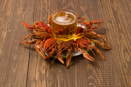 Prepared crayfishes on the plate with beer mug in the middle