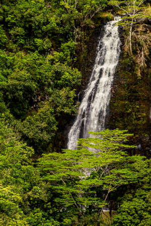 Opaekaa Falls waterfall in Kauai, Hawaii, USA