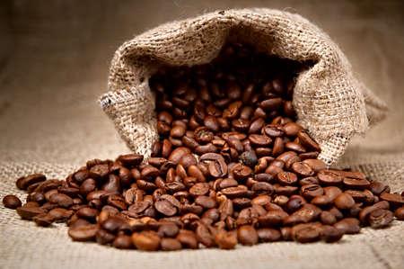 coffe bean: Studio colpo di chicchi di caff� in un sacchetto di Archivio Fotografico