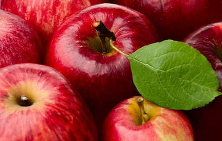 Fresh Red Apples and Green Leaf
