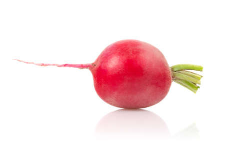 Single Radish Isolated on White Background