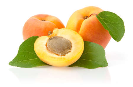 Apricots with Leaves Isolated on White Background