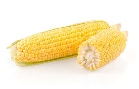 Corn Ears Isolated on White Background Stock Photo