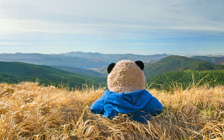 Lonely Teddy Bear looking at the mountains
