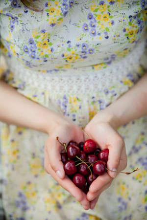 Female hands holding fresh sour cherries photo