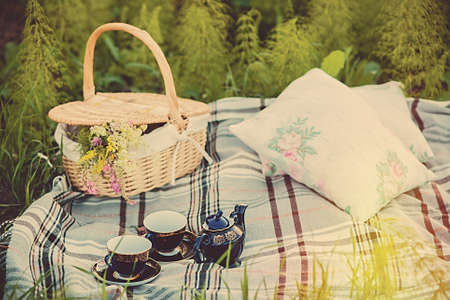 picnic cloth: summer picnic