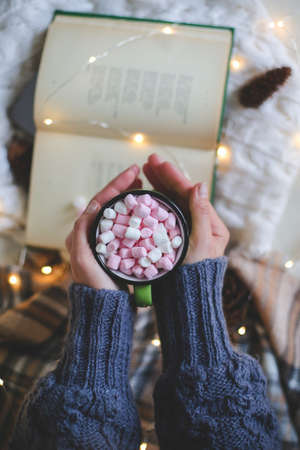 Christmas composition. female hands in a sweater holding a mug over a book. Imagens