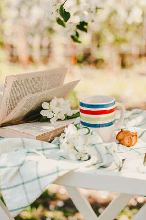Novosibirsk city, 05/12/2020. composition with a cup of tea with a plaid and a book on a chair on a background of wood. breakfast in nature Imagens - 147379882