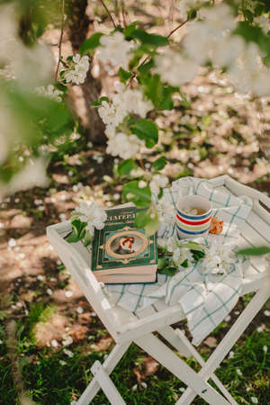 Novosibirsk city, 05/12/2020. composition with a cup of tea with a plaid and a book on a chair on a background of wood. breakfast in nature Editorial