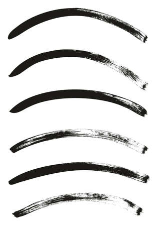 Calligraphy Paint Thin Brush Lines Curved High Detail Abstract Vector Background