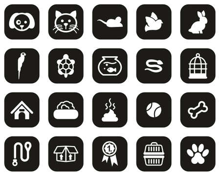 Pets & Pet Accessories Icons White On Black Flat Design Set Big
