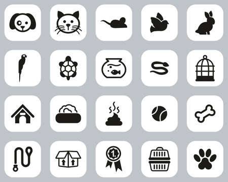 Pets & Pet Accessories Icons Black & White Flat Design Set Big