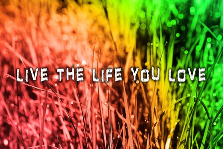 Live the live you love text in colorful background quote wallpaper